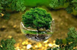 怎样实施科学的环保管理?